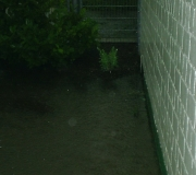 Hochwasser-07_012